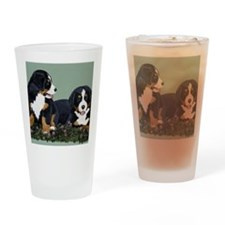 Bernese Pups in Clover Drinking Glass
