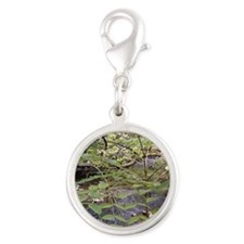 Waterfalls River Silver Round Charm