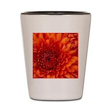 Chrysanthemum Shot Glass