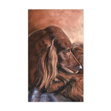 Irish Setter Sleeping Pegatinas