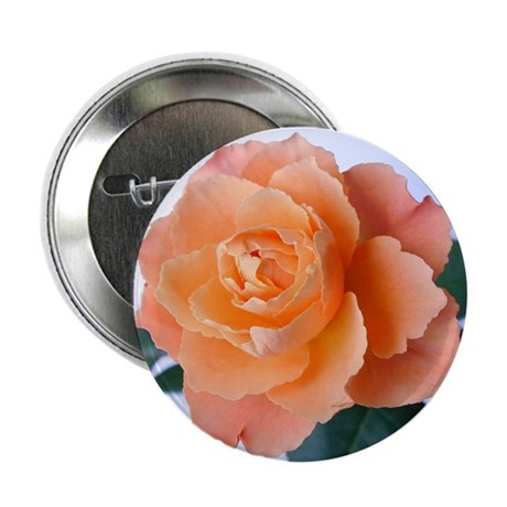 Orange Rose Button