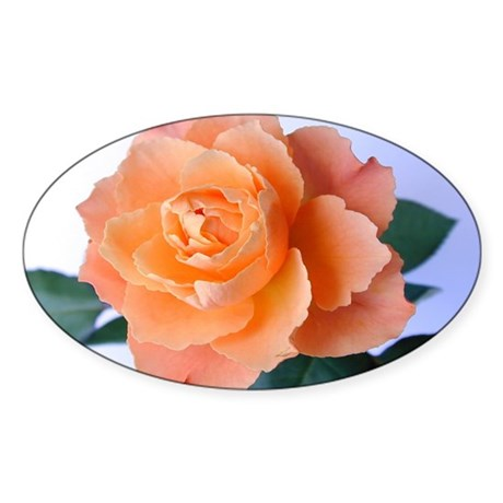 Orange Rose Oval Sticker