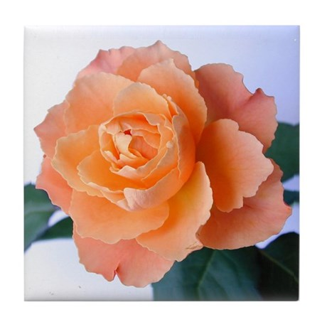 Orange Rose Tile Coaster