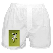 Two Cranes In Bamboo-oval ornament Boxer Shorts