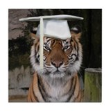 Tiger Graduation Tile Coaster