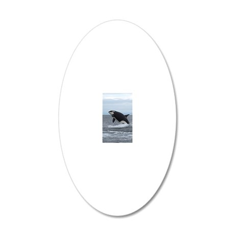 Copy of IMG_2447 20x12 Oval Wall Decal