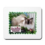 Ragdoll Cat/RCN Mousepad 