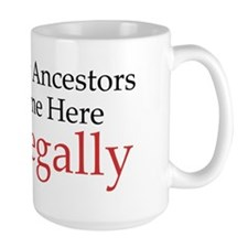 My Ancestors Came Here Legally Polish Mug