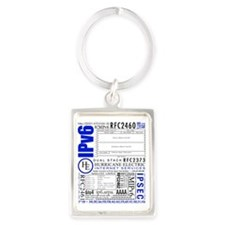 Hurricane Electric Its all about Portrait Keychain