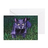 New Orleans Blue Cat Greeting Cards.