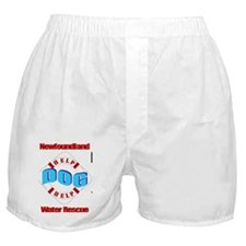 Save Your Honor Student - full bleed Boxer Shorts