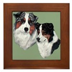 Australian Shepherd Twosome Framed Tile