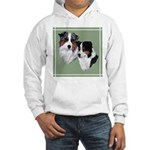 Australian Shepherd Twosome Hooded Sweatshirt