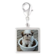 Shih Tzu Puppy in Bowl Silver Square Charm
