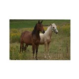 Andalusians in field Rectangle Magnet