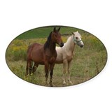 Andalusians in field Oval Decal