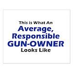 Gun-Owner Small Poster