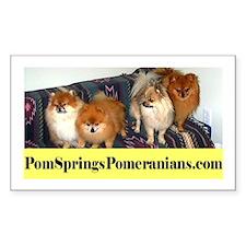PomSpringsPomeranians Rectangle Decal