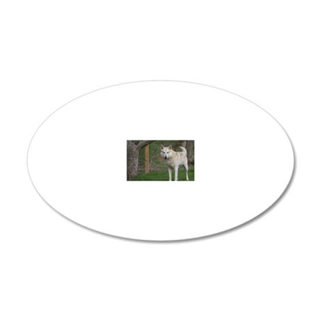 2011_1 20x12 Oval Wall Decal