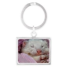 BabyFerret11x11-DBArtPanels1 Landscape Keychain