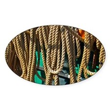 Copy 2 of ropes for the rigging Decal