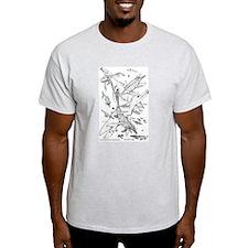 Ancient Waters Ash Grey T-Shirt