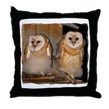 8x10_apparel Throw Pillow
