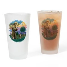 St francis (ff) - Tabby Tiger cat Drinking Glass