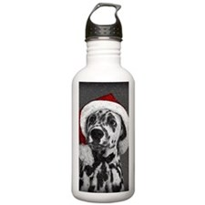 Dalmatian with snow Water Bottle