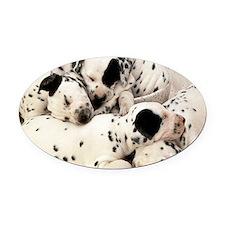 Dalmation mousepad Oval Car Magnet