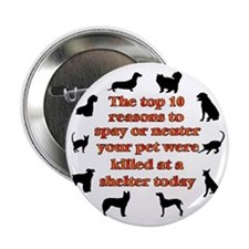 "10 reasons to spay_white 2.25"" Button"