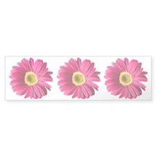 pop-daisy_fuchsia_bowl Bumper Sticker