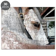 roan2_rnd Puzzle