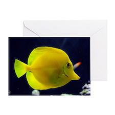yellow_tang_mini Greeting Card