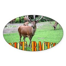 Nice Racks Wall Calendar Decal