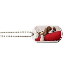 Spaniel post Dog Tags