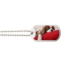 Spaniel note Dog Tags