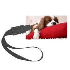 Spaniel note Luggage Tag