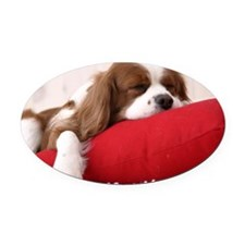 Spaniel note Oval Car Magnet