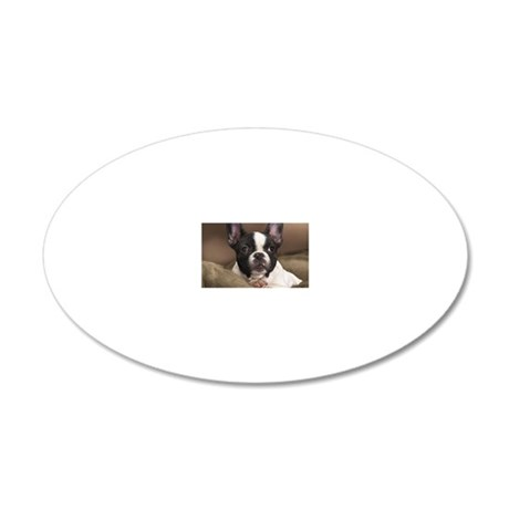F pup rec magnet 20x12 Oval Wall Decal