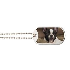 F pup rec magnet Dog Tags