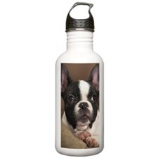 F pup journal Water Bottle