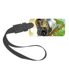 owl_butterfly_sticker Luggage Tag