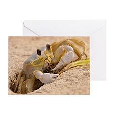 Fiddler Crab Greeting Card