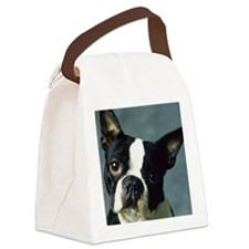 BT Portrait post Canvas Lunch Bag