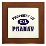Property of pranav Framed Tile