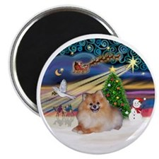 Xmas Magic - Pomeranian 4 Magnet