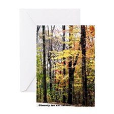 Woods14x10 Greeting Card
