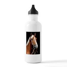 chestnut_443 Water Bottle