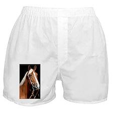 chestnut_441 Boxer Shorts